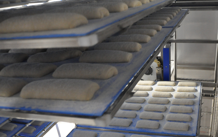 Ciabatta on the boards inside the tray-carrier proofer Alitech